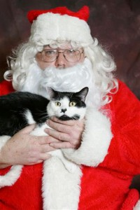 You can snap an unforgettable keepsake AND benefit Cat Adoption Team with Santa Claws